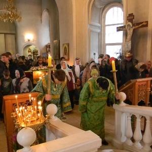 Velikij-post-2012-Vhod-Gospodenv-Ierusalim-(Verbnoe-voskresene) (30)